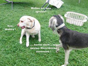 Buffy und Wahira